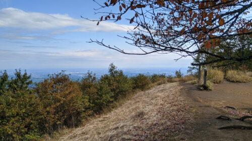 棒ノ折山山頂の草の斜面