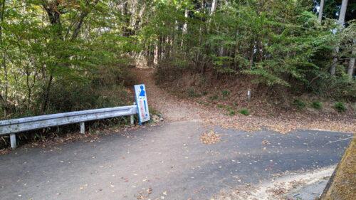 下山道の林道