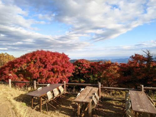 陣馬山山頂からの紅葉