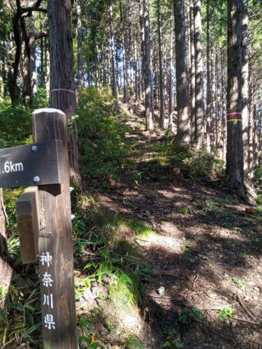 急勾配の登山道