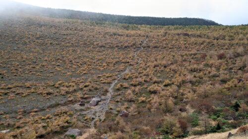 賽の河原の一本道